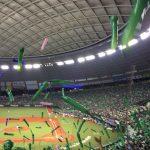 埼玉県に関わる全ての人対象!最大53%OFFでおトクに野球観戦をしよう。