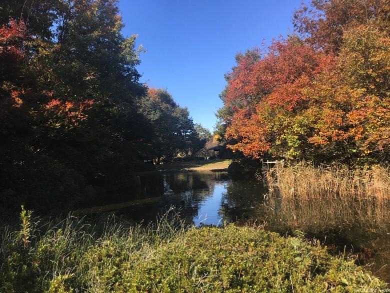 別府沼公園日本庭園