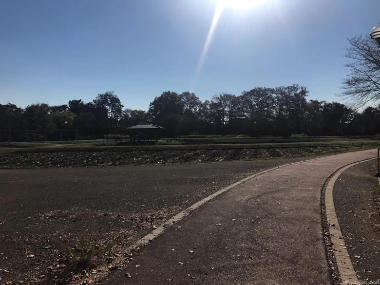 別府沼公園ランニングコース