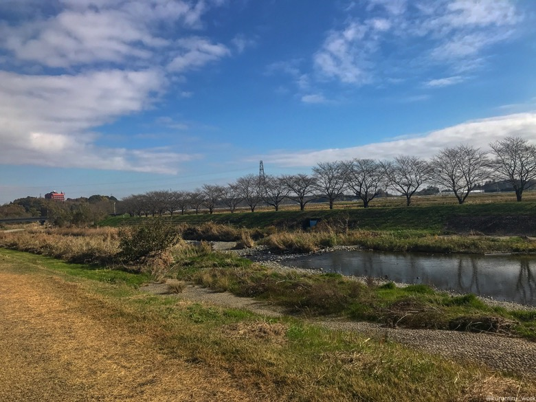 槻川散策回廊の秋